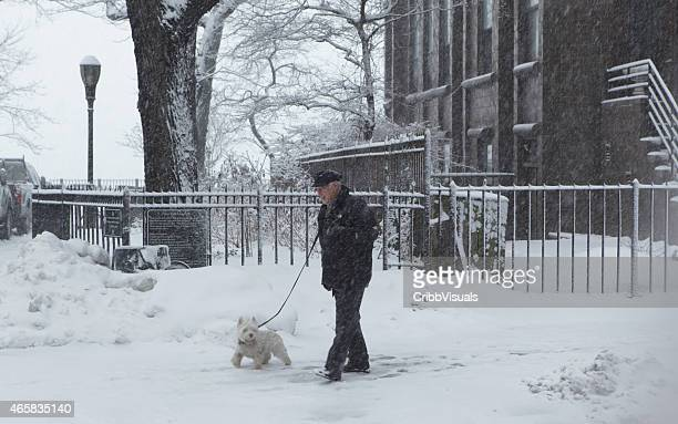 Man walks dog in Brooklyn Heights during a winter snowstorm