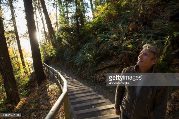 man walks down steps through forest and into the sunlight - ascent xmedia stock pictures, royalty-free photos & images
