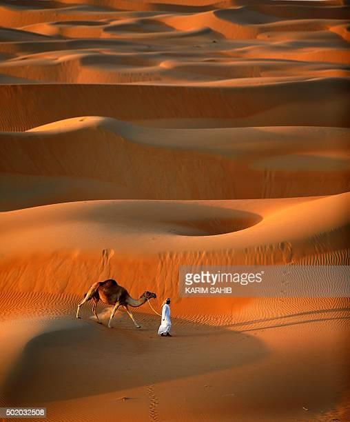 A man walks his camel across the Liwa Oasis southwest of the Emirati capital Abu Dhabi on December 20 2015 AFP PHOTO/KARIM SAHIB / AFP / KARIM SAHIB