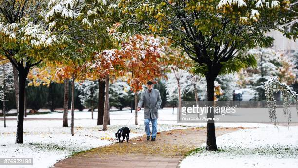 Man walks his dog after season's first snowfall in Usak, Turkey on November 21, 2017. Snow depth reaches 3 centimeters in town center and 10...