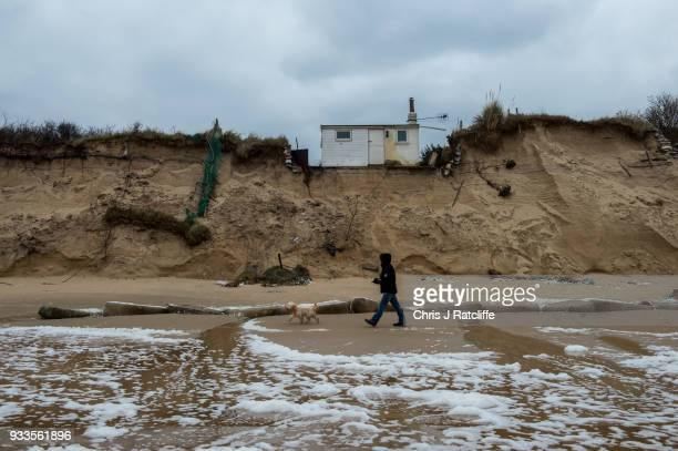 A man walks his dog along Hemsby beach in front of two houses that have been evacuated after high winds and waves eroded the dunes on which they sit...