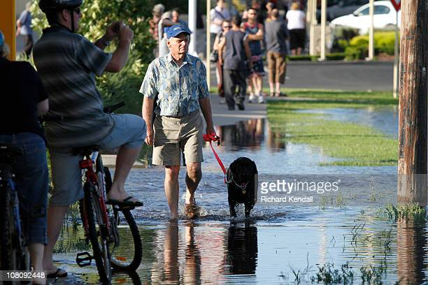 A man walks his dog in a flooded street near the Wimmera river on January 17 2011 in Horsham Australia Residents and emergency crews sandbagged...