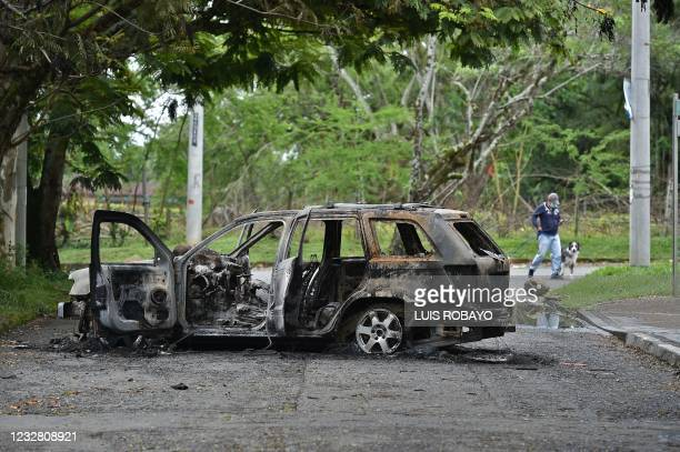 Man walks his dog near a burnt car after clashes between indigenous demonstrators and people who oppose blockades set up during protests against a...