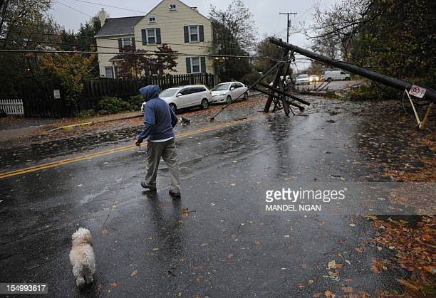 A man walks his dog near downed power lines in the wake of Hurricane Sandy October 30 2012 in Chevy Chase Maryland At least 13 people were killed in...