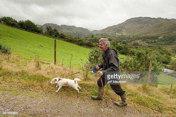 A man walks his dog on a rural country lane past farm fields.