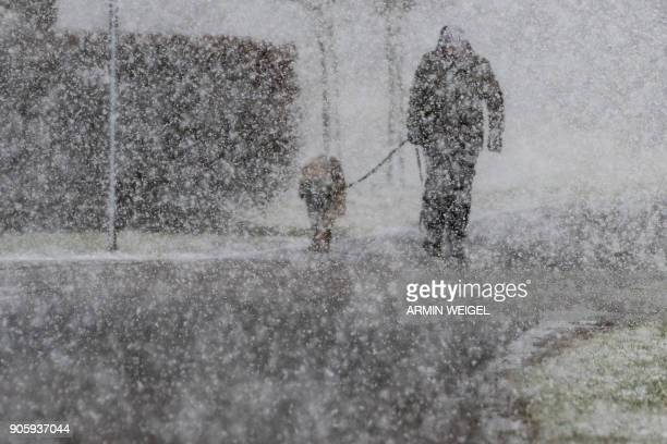 Man walks his dog through heavy snowfall in Straubing, southern Germany, on January 17, 2018. / AFP PHOTO / dpa / Armin Weigel / Germany OUT
