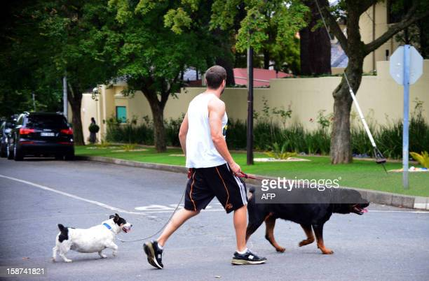 A man walks his dogs past the residence of Nelson Mandela in Johannesburg on December 27 2012 South Africa's antiapartheid icon Nelson Mandela was...