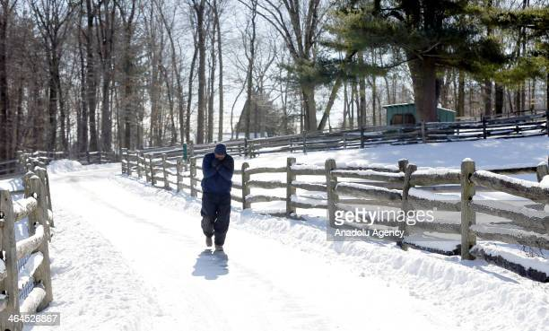 A man walks on a snow covered way after the winter storm Janus Connecticut United States January 22 2014 Janus left 4 deaths and dropped over 30cm...