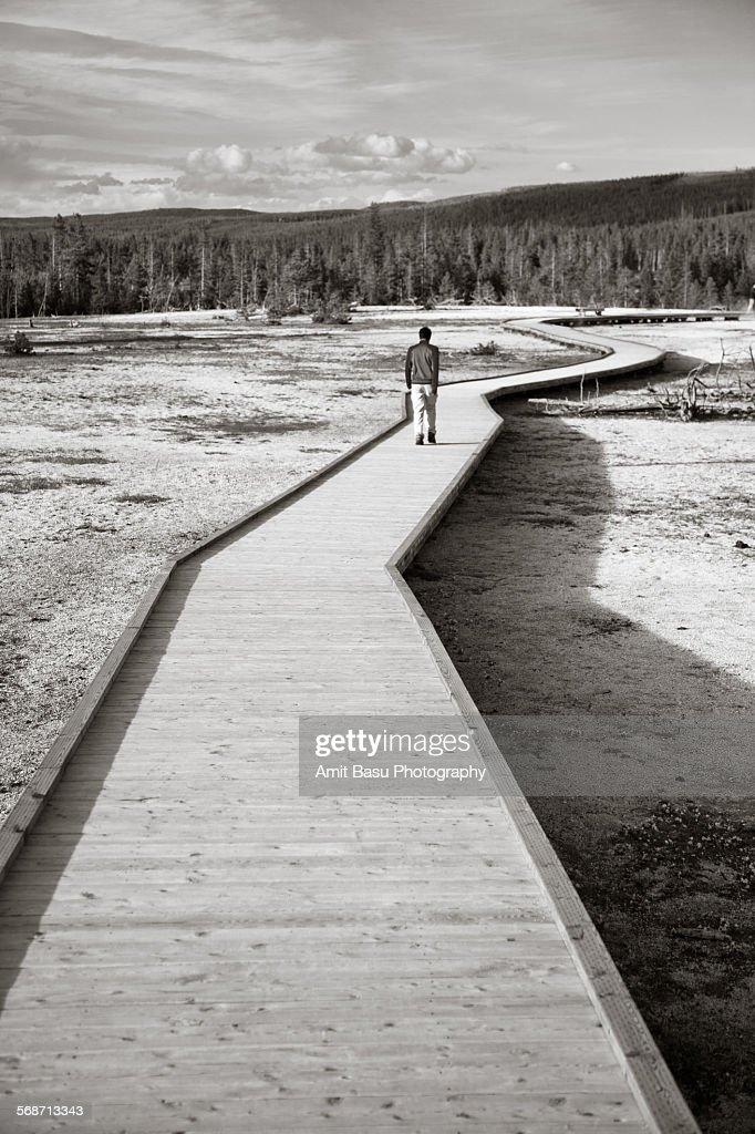 A man walks on boardwalk at Yellowstone park : Stock Photo