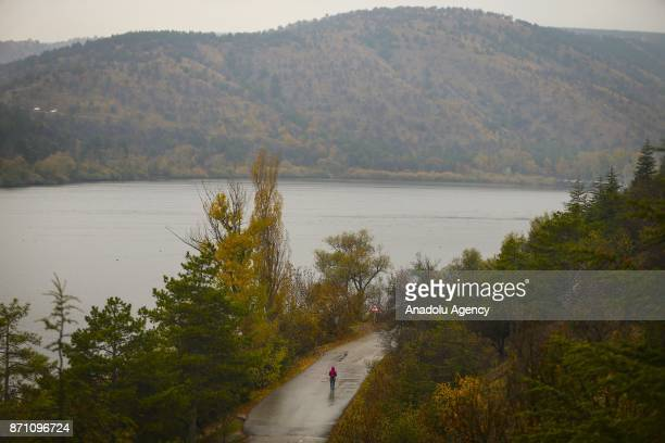 A man walks on the road surrounded by yellowed trees on a chilly autumn afternoon at the Eymir Lake in Ankara Turkey on November 06 2017