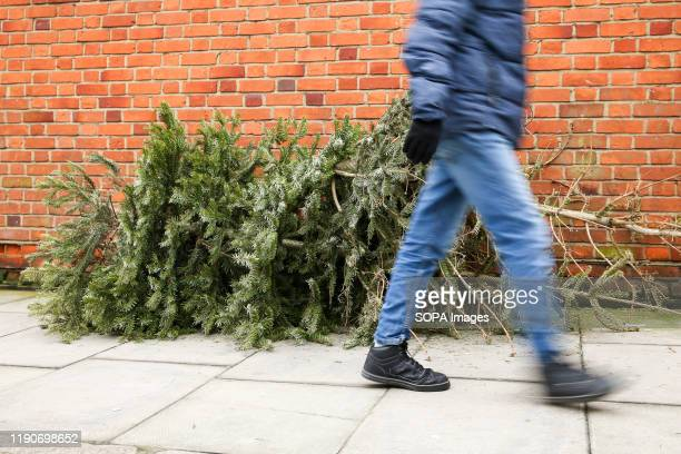 Man walks past a pile of Christmas trees left on the pavement in Haringey, north London, just three days after Christmas Day.
