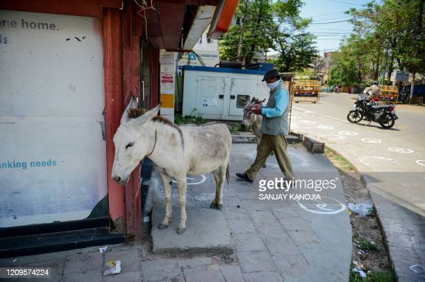 Man walks past donkeys as he arrives at an ATM booth during a government-imposed nationwide lockdown as a preventive measure against the COVID-19...