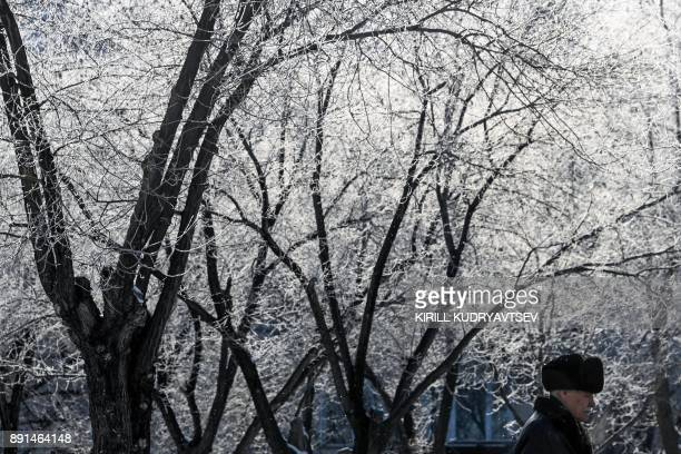 A man walks past snowcovered trees in Baikonur city near the Russian leased Kazakh Baikonur cosmodrome on December 13 2017 The temperature in...