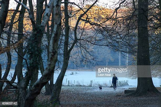 A man walks through Highgate woods as the country wakes up to subzero temperatures on November 30 2016 in London England Sennybridge in Wales...