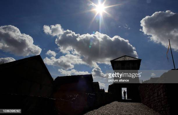 Man walks through the pincer gate at the Tilleda royal palace in Tilleda, Germany, 29 August 2016. It was determined during excavations that the...