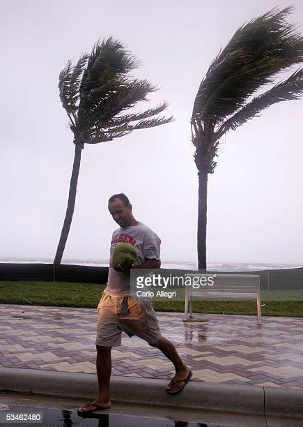 A man walks with a coconut blown out of tree by 50mph winds in advance of Hurricane Katrina August 25 2005 in Deerfield Beach Florida Katrina is...