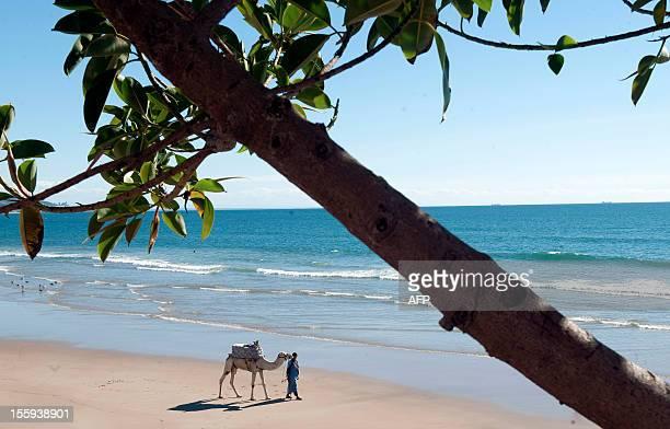 A man walks with his camel on a beach in Taghazout near Agadir on November 9 2012 AFP PHOTO /FADEL SENNA