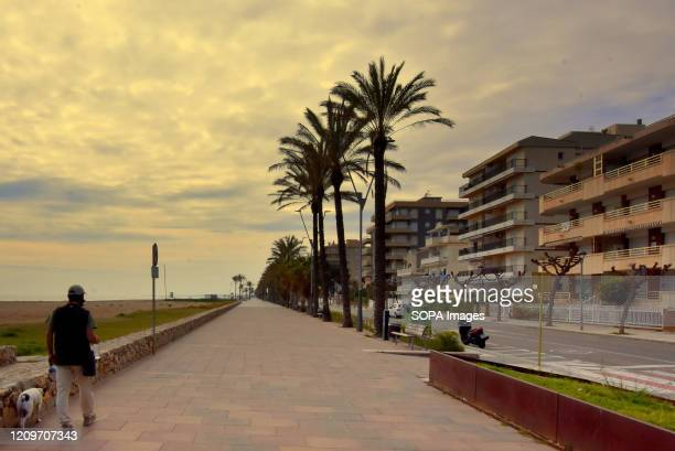 A man walks with his dog along an empty Calafell beach during the coronavirus crisis The City Council of Calafell blocked some roads from accessing...