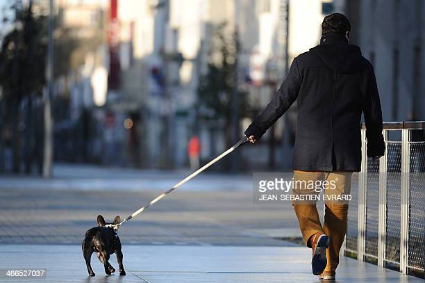 Man walks with his dog on a leash on February 2, 2014 in La Roche-sur-Yon, western France. AFP PHOTO / JEAN-SEBASTIEN EVRARD