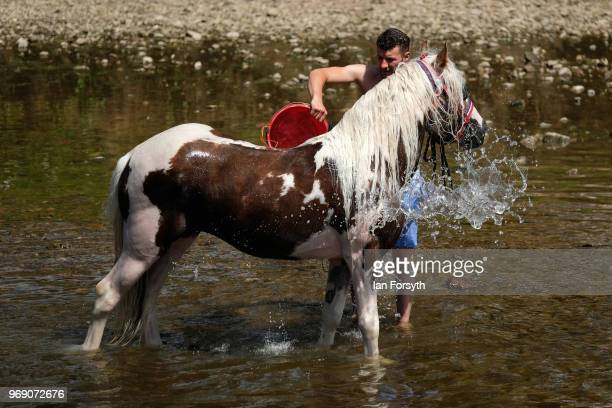 A man washes his horse in the River Eden on the first day of the Appleby Horse Fair on June 7 2018 in Appleby EnglandThe fair is an annual gathering...