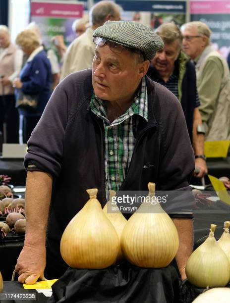 A man watches as onions are weighed during judging for the giant vegetable competition at the Harrogate Autumn Flower Show on September 13 2019 in...