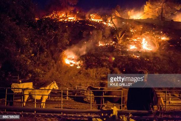 A man watches as the Creek Fire burns behind a hillside near houses in the Shadow Hills neighborhood of Los Angeles California on December 5 2017...