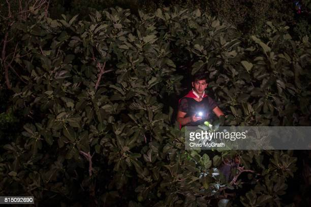 A man watches on from a tree as he waits for official ceremonies to begin on the July 15 Martyrs Bridge on the first anniversary of the July 15 2016...