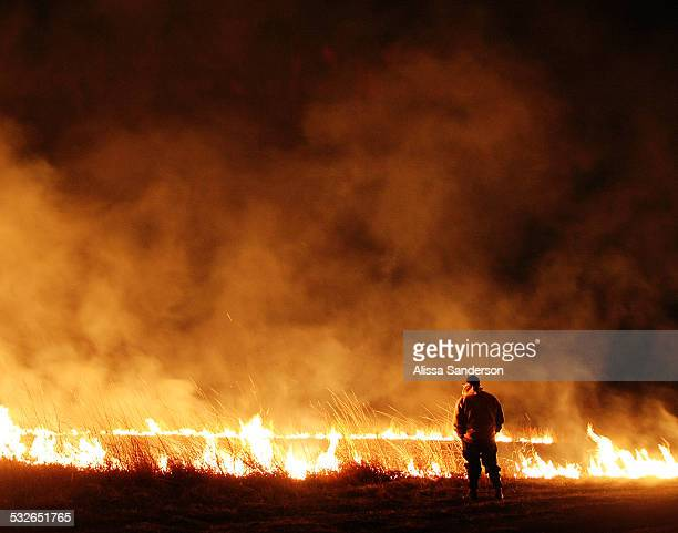 man watching a field fire at night - fire natural phenomenon stock photos and pictures