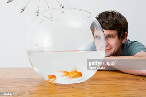 Man watching goldfish