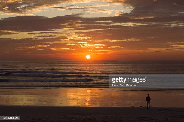 man watching sunset at beach - sunset beach stock photos and pictures