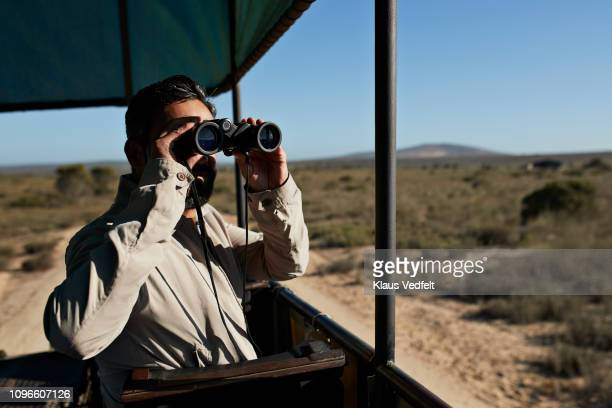 man watching wild animals threw binoculars from safari vehicle - wildlife reserve stock pictures, royalty-free photos & images
