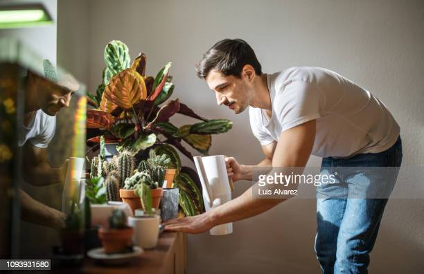 man watering cacti plants in his living room - freizeitaktivität stock-fotos und bilder