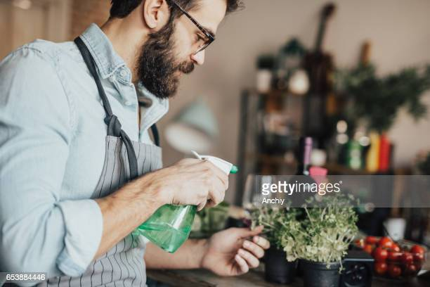 Man watering houseplants
