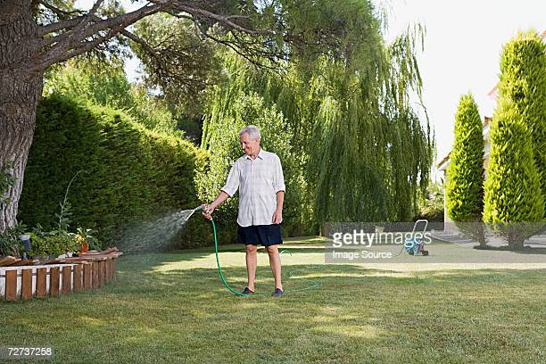 man watering lawn - watering stock pictures, royalty-free photos & images