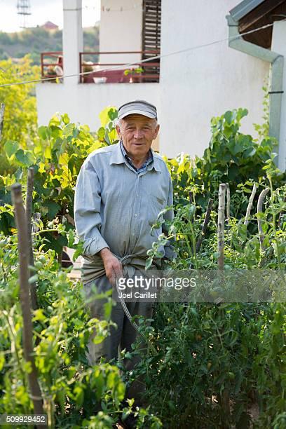 homme eau de tomates à mitrovica, au kosovo - kosovo photos et images de collection