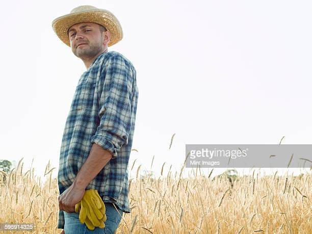 man wearing a checkered shirt and a hat standing in a cornfield. - vanguardians stock pictures, royalty-free photos & images