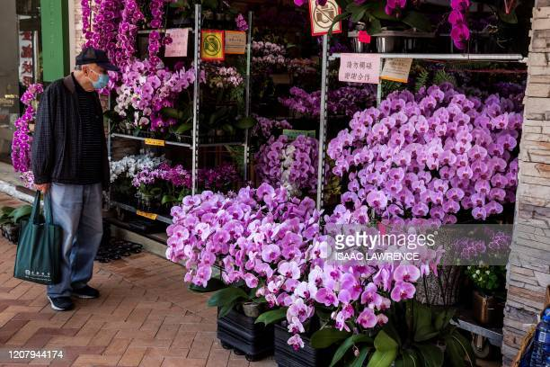 A man wearing a face mask amid concerns over the spread of the COVID19 novel coronavirus looks at orchids for sale in Hong Kong on March 22 2020