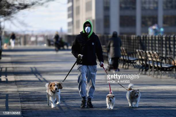 A man wearing a face mask walks dogs on March 24 2020 in New York City US lawmakers closed in on a deal Tuesday to help save the teetering economy by...