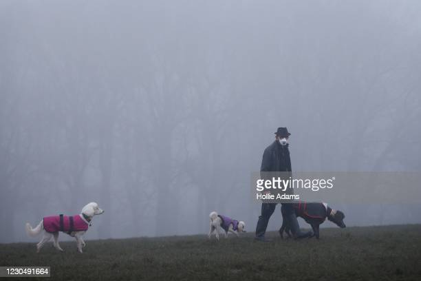 Man wearing a face mask walks his dogs in the fog at Parliament Hill viewpoint in Hampstead Heath on January 9 in London, England. The Met Office...