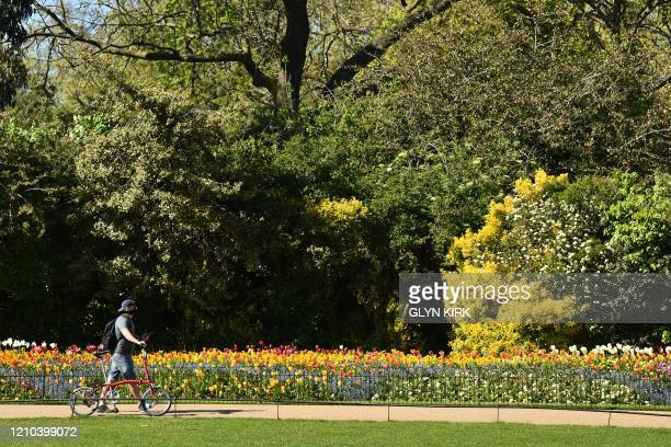 A man wearing a protective face mask wheels his bicycle past flower beds in St James's Park in central London on April 19 during the novel...