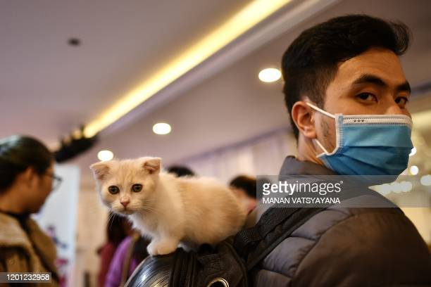 A man wearing a protective facemask carries his kitten on his backpack during Vietnam's first national cat show in Hanoi on February 16 2020 amid...