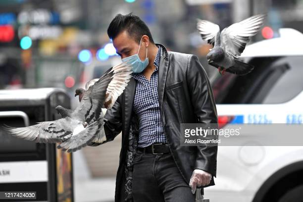 A man wearing a protective mask and gloves feeds pigeons in Times Square amid the coronavirus pandemic on April 05 2020 in New York City COVID19 has...