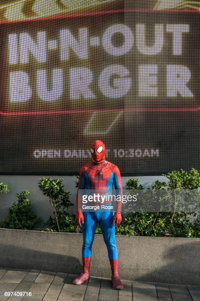 A man wearing a 'Spiderman' costume works for tips on The Strip outside the Flamingo Hotel Casino on May 29 2017 in Las Vegas Nevada Tourism in...