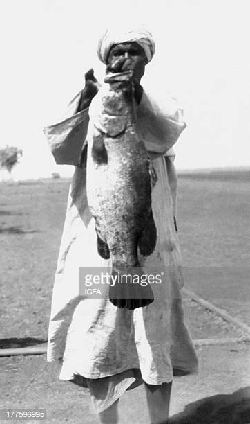 A man wearing a turban stands holding a Nile perch caught near the Sennar Dam in Sudan circa 1933