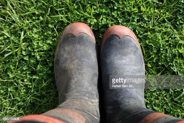 man wearing gumboots standing on green grass - rafael ben ari fotografías e imágenes de stock