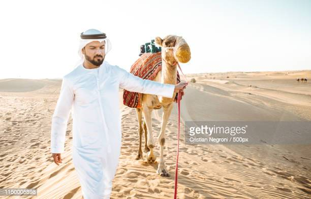 man wearing traditional clothes, taking a camel out on the deser - qatar desert stock photos and pictures