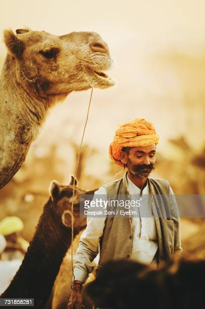 Man Wearing Turban While Standing By Camels