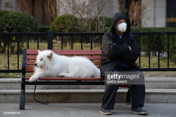 A man wears a face mask as a preventive measure against the COVID19 coronavirus as he sits with his dog on a bench on a sidewalk in Beijing on...