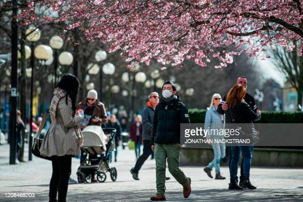 Man wears a protective mask as he visits the cherry blossoms trees at Kungstradgarden in Stockholm on March 28 during the the new coronavirus...