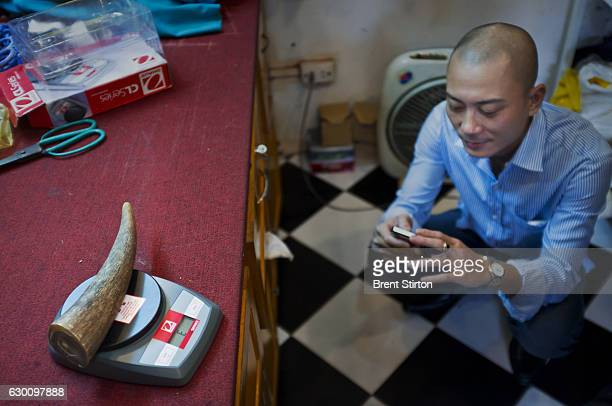 A man weighs an illegal piece of African rhino horn in the back of a tailors shop in Hanoi Vietnam on October 10 2011 He attempted to sell the 135...